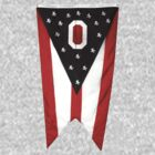 Ohio Flag by WeBleedOhio
