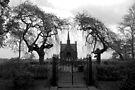 Roman Catholic Cemetery by Jo Nijenhuis