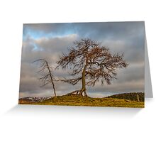 KILDRUMMY - THE ENTS Greeting Card