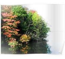 Fall Trees on the water Poster