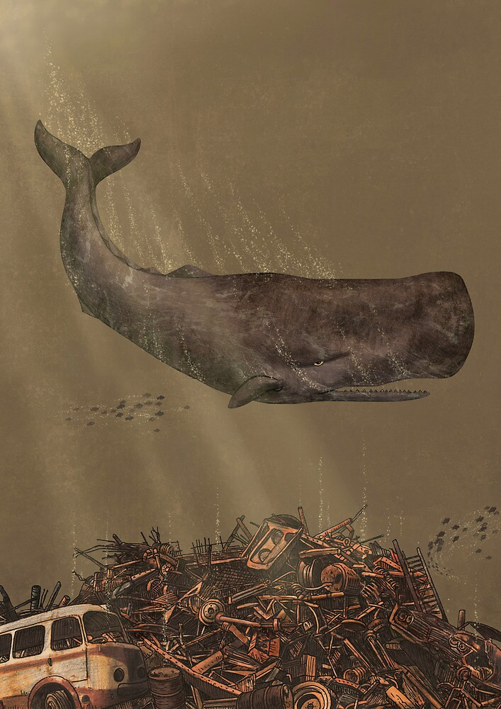 The Last Whale  by Terry  Fan