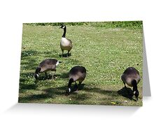 Here we are all grown up now! Greeting Card