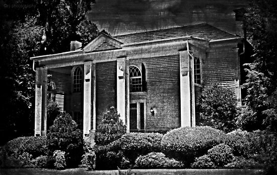 This Old House by Scott Mitchell