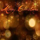 Christmas Lights by jlechuga