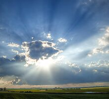 Blinded By The Light by Sandra Parlow