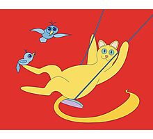 Cat On A Swing Photographic Print