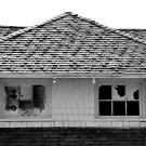 Broken Windows by David Schroeder