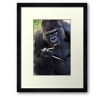 Chop-sticks are not for everyone Framed Print