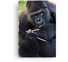 Chop-sticks are not for everyone Canvas Print