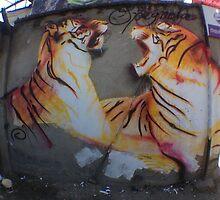 valentine tigers in nepal by dustinspagnola