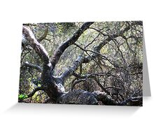 Landscape With Gnarled Tree Greeting Card