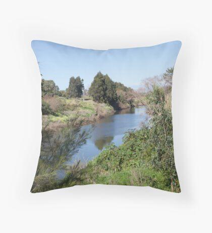 Paterson River, Paterson NSW Australia Throw Pillow