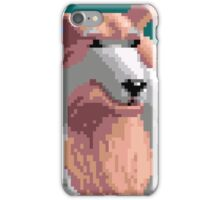 Saladin iPhone Case/Skin