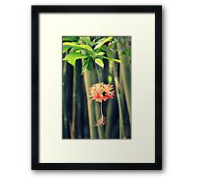 Jungle Beauty Framed Print