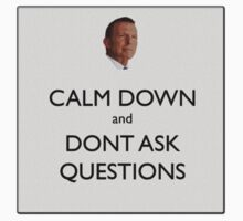 Calm Down and Don't Ask Questions by wolfcat