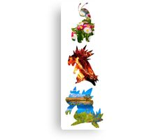 The evolved starters (johto) Canvas Print