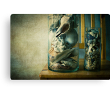 « Cabinet of curiosities » Canvas Print