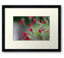 """Red Passion"" Framed Print"