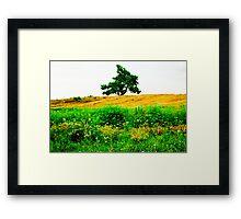 Lone Prairie Framed Print