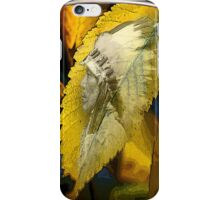 indian nature iPhone Case/Skin