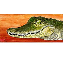 Anahuac Alligator Photographic Print