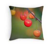 Evening Sweets Throw Pillow
