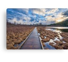 One Morning on One Mile Lake Canvas Print