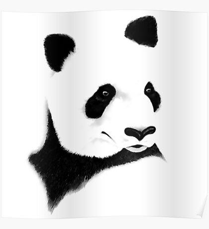 Giant Panda (Ailuropoda melanoleuca) Poster