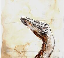 Troodon by Andy Church