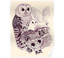 Owl Movement Poster