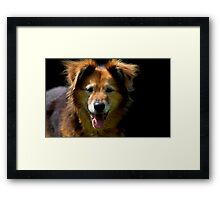 You did say sausages? Framed Print