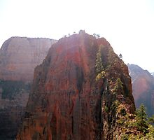 Angel's Landing by Alli Ingalls