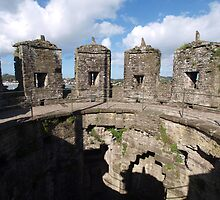 Conwy Castle (3) - Wales by kalaryder