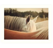 Quarter Horse Ears Art Print