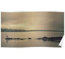 Gloomy Bay Poster