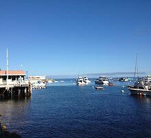 Catalina Island by photosbyamy