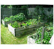 My veg garden 3/5 done. Poster