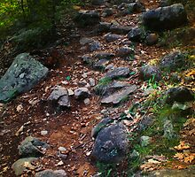 The Mountain Trail to Arnold Pond by Nazareth