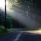 Early morning sunbeams by Rainydayphotos