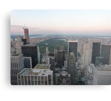 Central Park, New York Metal Print