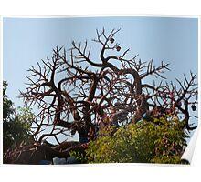 Freaky Tree Poster