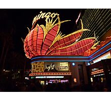 Las Vegas, The Flamingo at night. Photographic Print