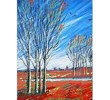 blauer wind über rot Photographic Print