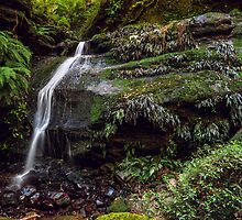 Waterfall Creek by vilaro Images