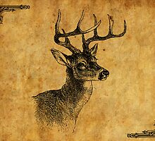 Stag by margz