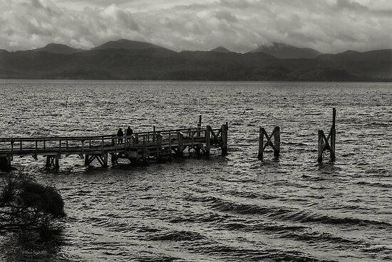 Jetty at Sarah Island, Tasmania, Australia by Elaine Teague