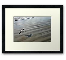 Flying over the Beach - Port Aransas Texas Framed Print