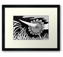 243 - THE PIERCED FLOWER - DAVE EDWARDS - INK - 2013 Framed Print