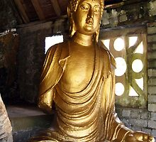 Buddha in Portmeirion Wales by Yorkspalette