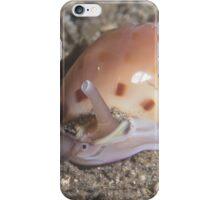 Helmet Snail iPhone Case/Skin